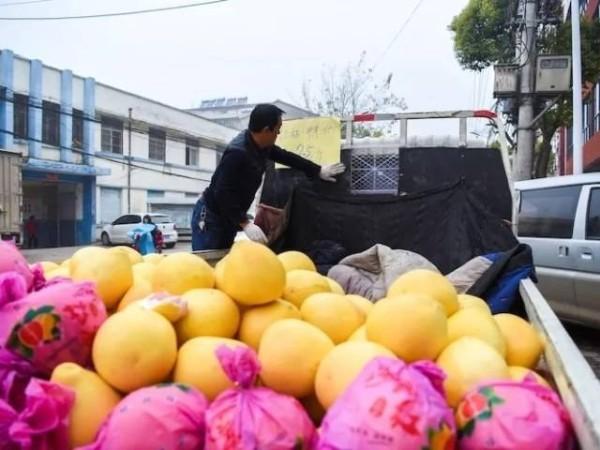 小货车卖水果怎么样?想做水果生意的朋友过来看看吧