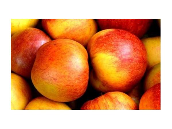 油桃是什么 夏季服用油桃会不会上火?