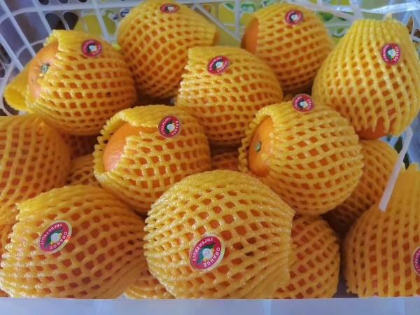 水果微商广告语大全 水果微商的经典广告词
