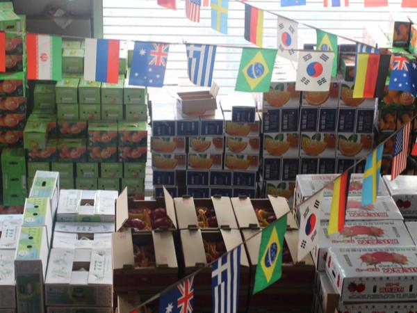 水果批发没货源,你想要的进货渠道,来水果批发市场金泉果业