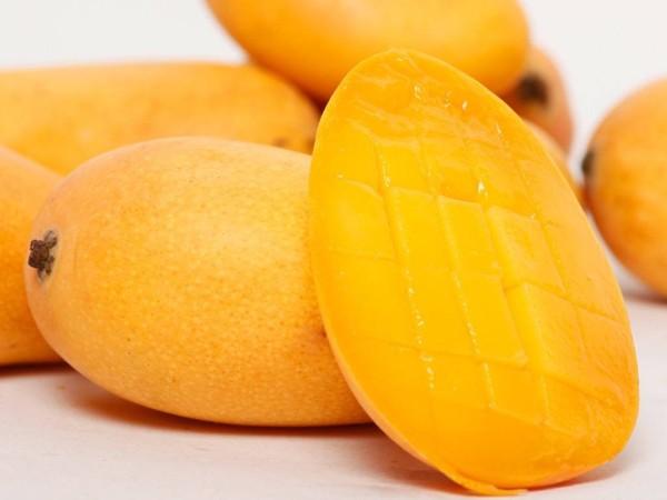 芒果的营养价值