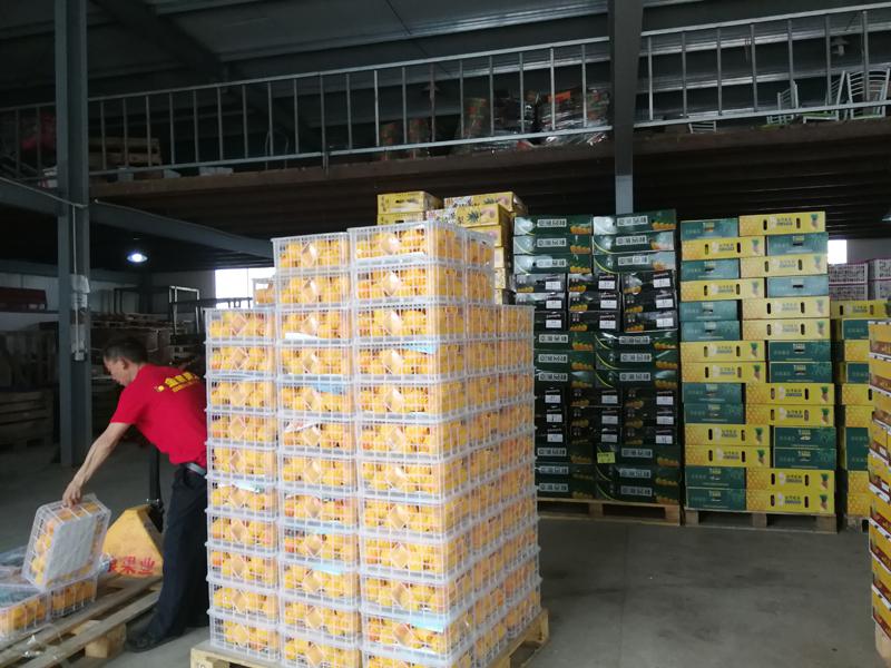 水果批发市场货场