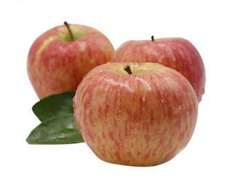 金泉果业大讲堂:苹果的作用与功效