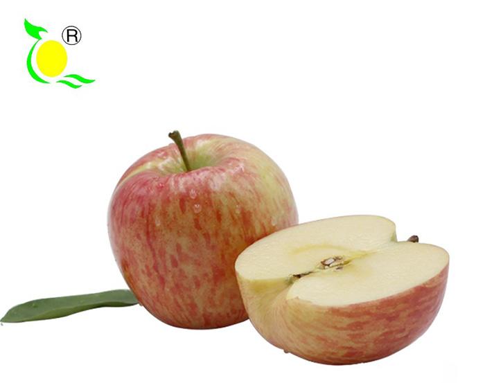 水果百科-苹果