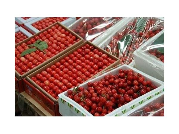 无锡朝阳农产品大市场